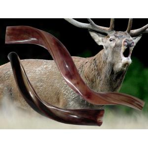 Bőgőkürt – szarvashívó
