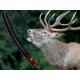 Hlas rujnej jelenice z dreva